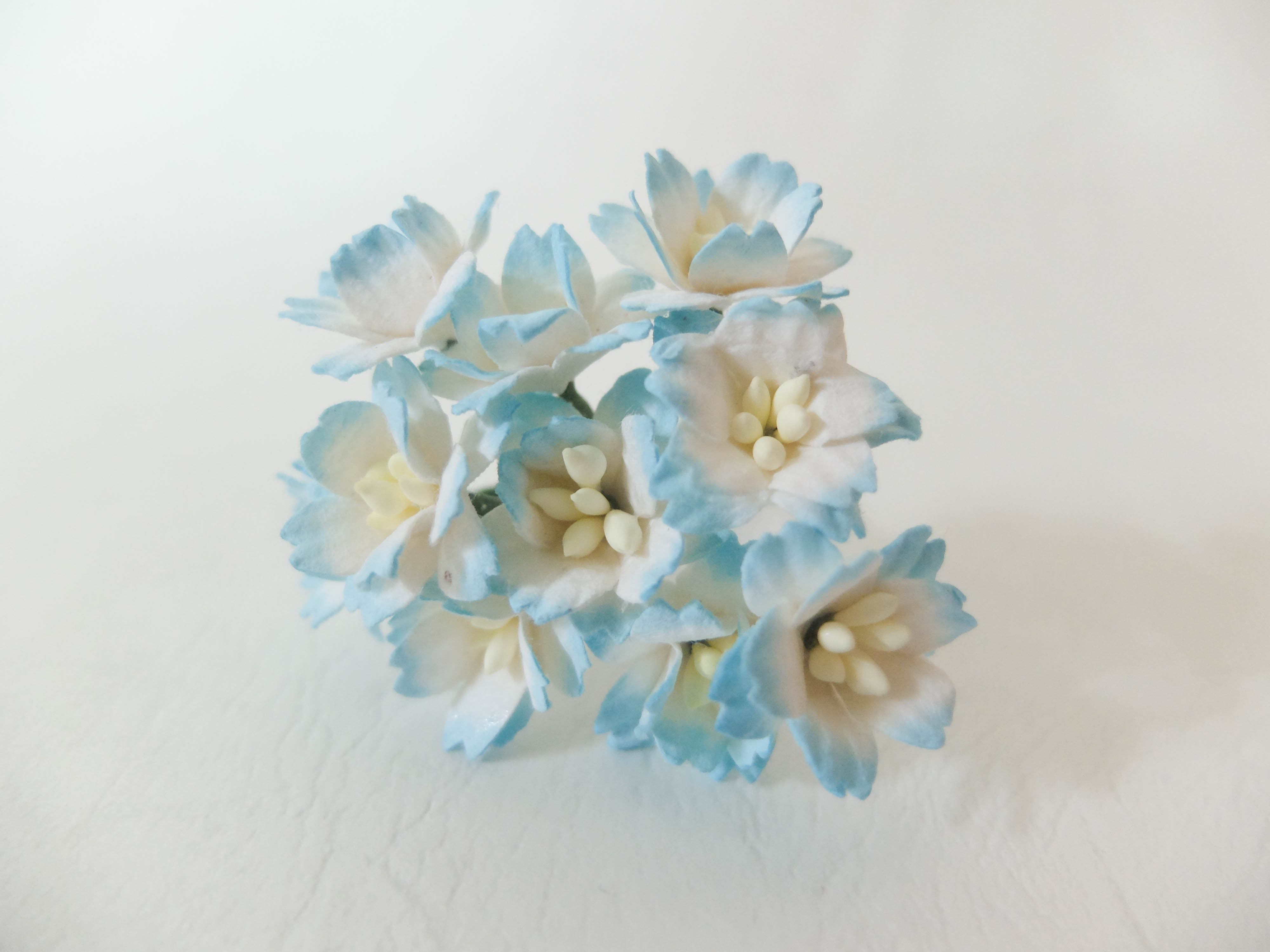 New Arrivals January 2016 Both New Paper Flowers And New Colors