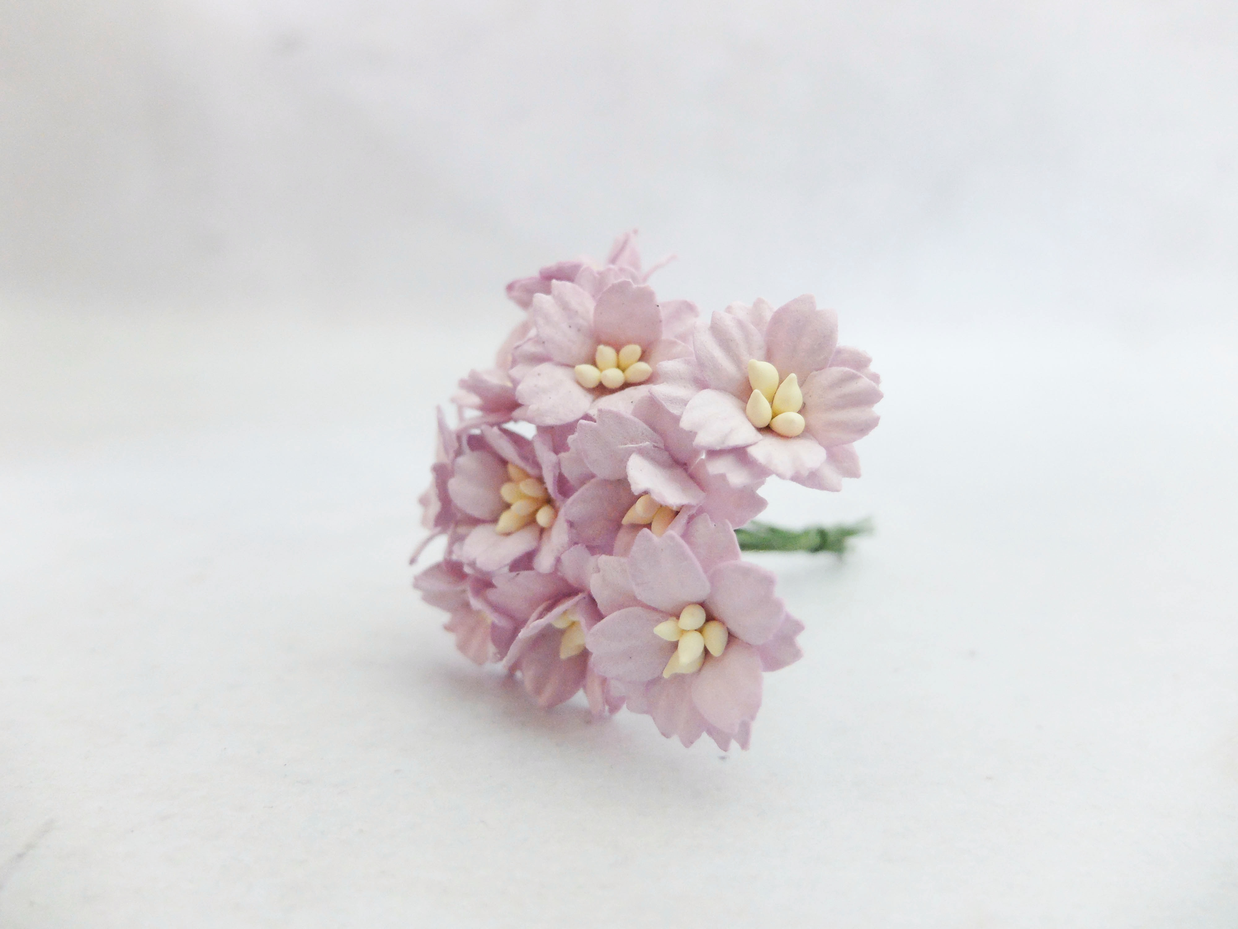 2 cm paper cherry blossom mulberry flowers with wire stems 20mm paper cherry blossom mightylinksfo
